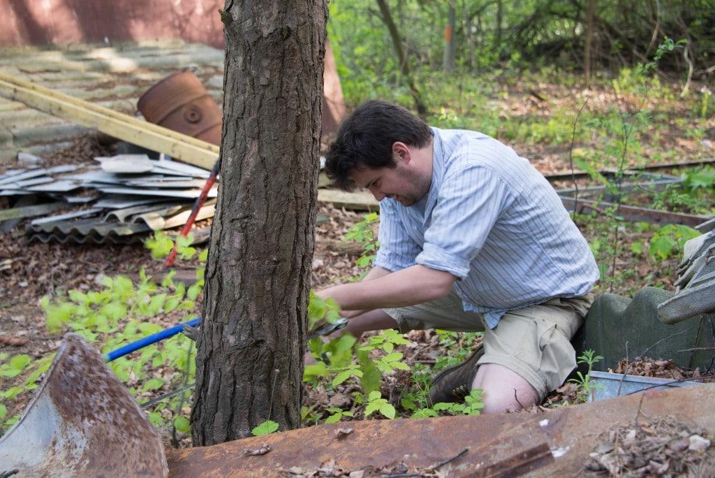 Ein Baum wird mit einer Säge gefällt